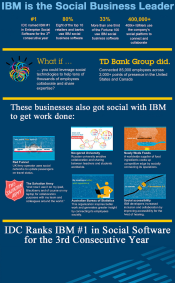 ibminfographic